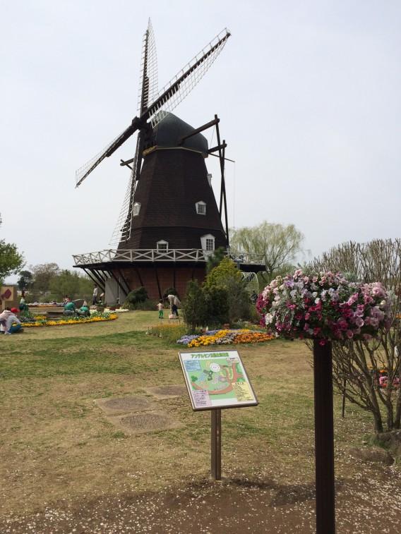 船橋アンデルセン公園 風車 大