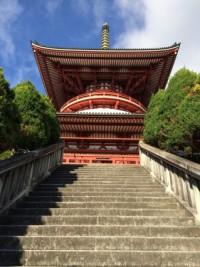成田山公園 平和大塔